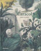Caracol - Snail