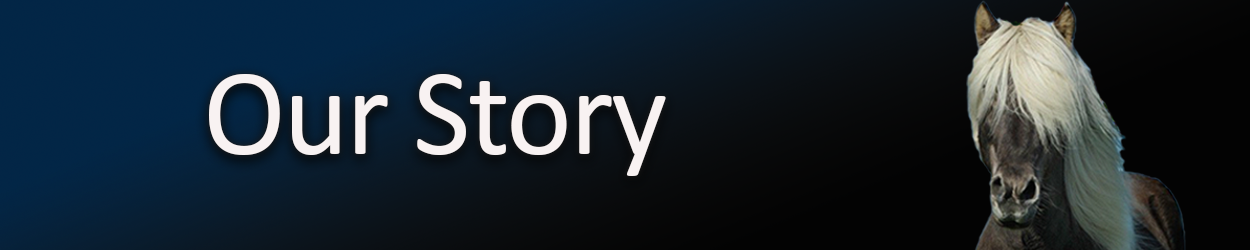 our-story-banner.png