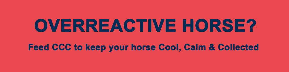 overreactive-horse.png