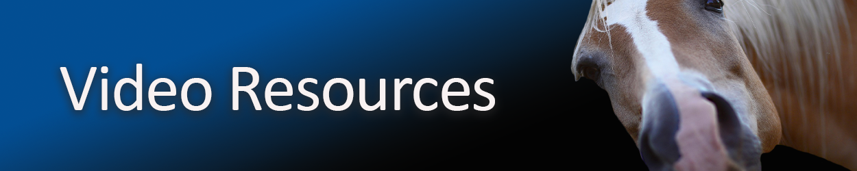 video-resources.png