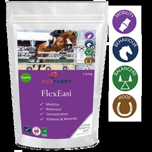 FlexEasi Follow On (formerly known as KS+)