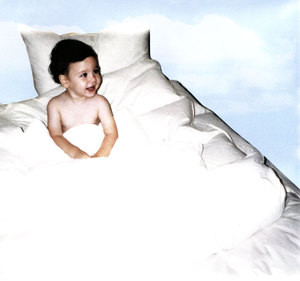 NEW Queen / Standard White Goose Down Bed Pillow 330 TC