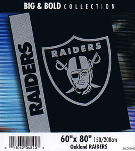 NFL Oakland Raiders stadium BLANKET throw bedspread NEW