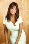 Raquel Welch Wig - Show Stopper full 1