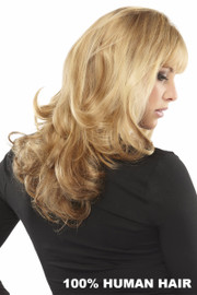 EasiHair Extension - EasiXtend Clip-in Extensions Professional 14 HH (#317) Back
