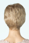Amore Wig Dixie 2521 back