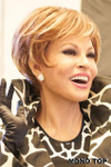 Raquel Welch Wig - Excite side 1