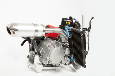 Engine, YX150 Modified 204cc Thumper X Engine (all externals For Go-Kart), YX204