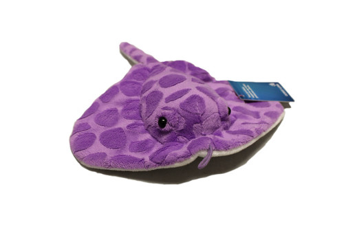 Purple ray stuffy with light-purple patterns on top side with a white bottom.