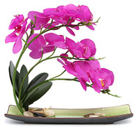 NNEE Artificial Phalaenopsis Orchid Arrangement with Decorative Flower Pot - Purple Orchild A325
