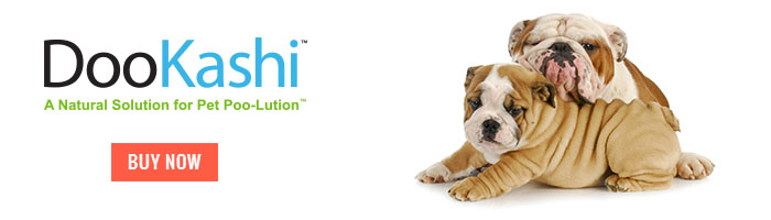 DooKashi For Dogs Mini Banner