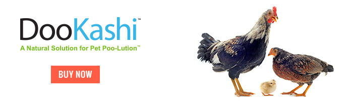 DooKashi For Poultry Mini Banner