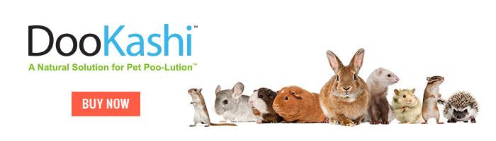 Small Animals Mini Banner