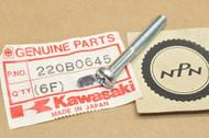 NOS Kawasaki C2 F11 F3 G3 H1 H2 KD80 KDX250 KE100 KH500 KT250 KV75 KX250 MT1 S1 S2 Pan Head Screw 6x45 220B0645