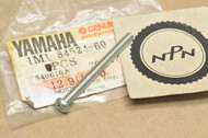 NOS Yamaha BW200 DT250 DT400 GT80 IT250 QT50 RD350 XS750 XT225 XT600 YX600 Lens Screw 1M1-84524-60