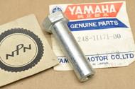 NOS Yamaha AT1 CT1 DT100 DT175 HT1 LT2 MX100 MX175 RS100 RT100 TD2 TY175 YZ100 Cylinder Nut 248-11171-00