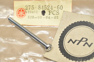NOS Yamaha AT1 CT1 DT1 DT2 G6S JT2 LT2 R5 RT1 RT2 TX650 XC125 XJ900 XS1 XS2 XS400 XV920 Lens Screw 275-84524-60