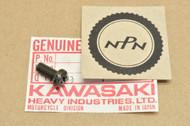 NOS Kawasaki EX305 KLT110 KLT160 KLT200 KLT250 KZ1000 KZ1100 KZ550 KZ750 Screw 220C0512
