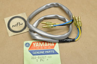 NOS Yamaha AT1 AT2 AT3 CT1 CT2 CT3 DS7 R5 RD250 RD350 TX650 XS1 XS2 Tail Light Cord Wire Harness 251-84517-60