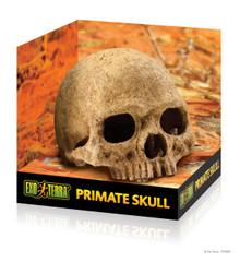 Exo Terra Primate Skull Hide / Cave