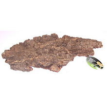 Cork Bark - Medium
