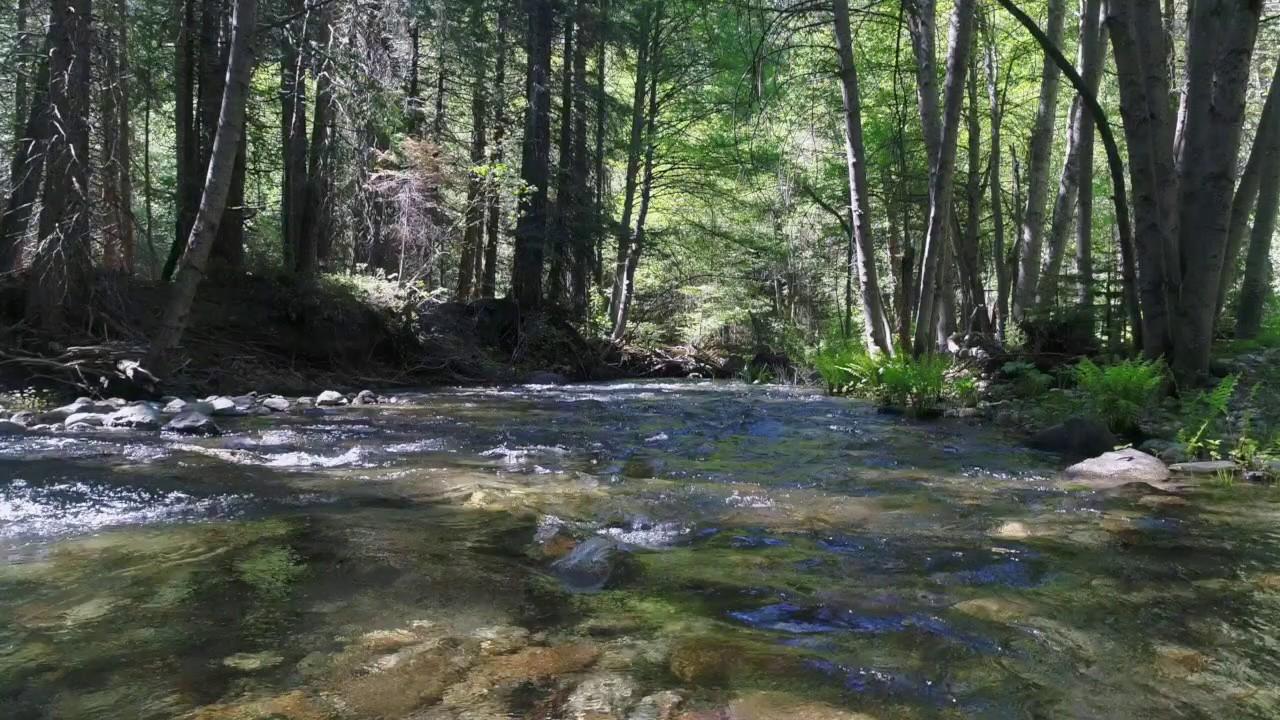 habitat-brook.original.jpg
