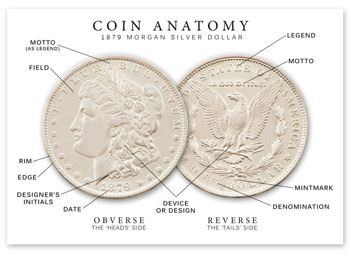 coin anatomy 1879 silver dollar