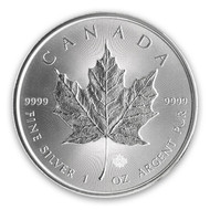 Canadian Silver Maple Leaf- Date Our Choice