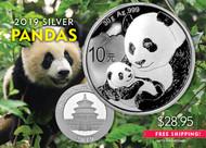 2019 Silver Panda