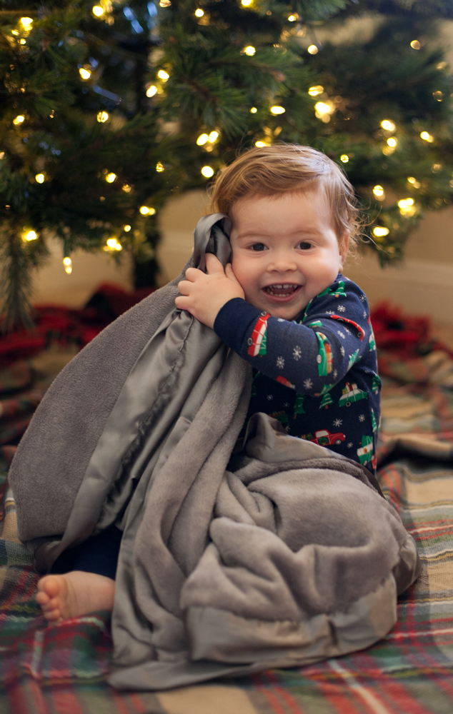 comfortsilkie-christmasmorning1.jpg