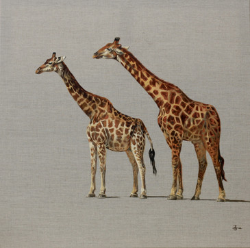 Pair of Giraffe