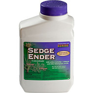Sedge Ender Conc. Pt.