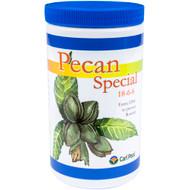 Pecan Special 24 oz.