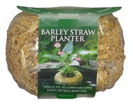 Barley Straw Planter Mini 3oz