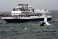 06/12-06/16/22 Cape Cod Delight Sunday-Thursday June 12-16, 2022