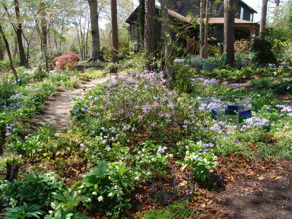 garden-april.jpg