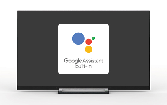 Google Assistant Built-In