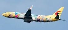 JC Wings CHINA EASTERN B737-800(W) (DUFFY LIVERY) B-1316 EW4738008 1:400