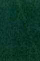 57-huntergreen.jpg