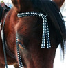 "Browband for Ruchi color Black/White ""B"""