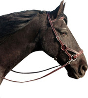 """Flandy"" Bitless Leather Bridle"