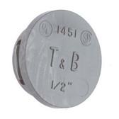 "T&B 1454 - 1-1/4"" Non-Metallic Thermoplastic Knockout Plug"