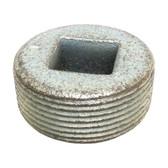 """Appleton PLG150 - 1-1/2"""" Unilet Reccessed Head Close Up Plug"""