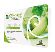 Treefrog Freshbox Natural Air Freshener - Melon Scent