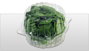 catgraphic-lettucecontainer.png