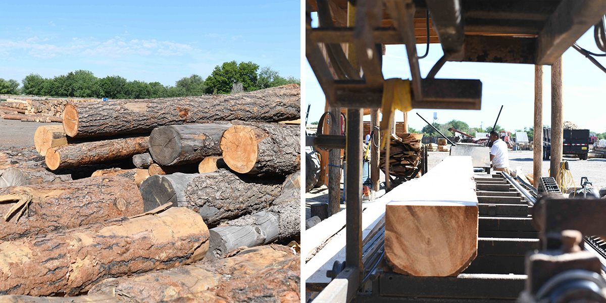 Ponderosa Pine Logs