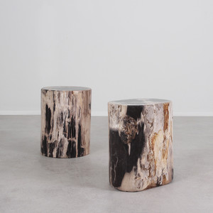 Genuine Dappled Petrified Wood Log Table 14 - 16 diameter x 17 H inches, expect variation