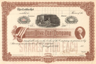 Mount Olive Coal Company stock certificate 1880's (Illinois)
