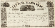 Pine Plains Bank stock certificate 1839 (New York)