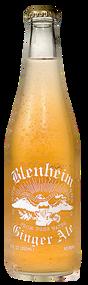 Blenheim #5 Not As Hot Ginger Ale  (Gold Cap) in 12 oz. glass bottles for Sale